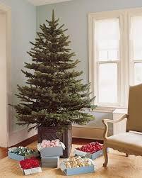 Tree-Trimming Secrets   Martha Stewart
