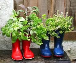 Small Picture boot planter balcony herb garden 4mini best 25 small herb