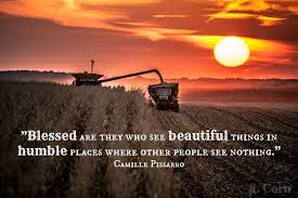 Farm Life Quotes Mesmerizing Blessed Are They Who See Beautiful Things In Humble Places Where