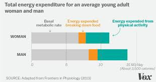 Accounting T Chart The Science Is In Exercise Wont Help You Lose Much Weight Vox