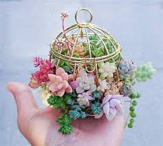 birdcage flower planters stunning