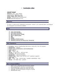 Game developer resume website