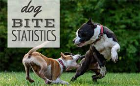 12 Year Us Dog Bite Fatality Chart Dog Bite Statistics How Likely Are You To Get Bit