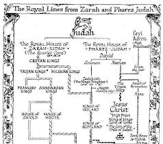 This Simplified Chart Essentially Agrees With The Genealogy