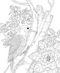 Grains Coloring Pages Coloring Page   Free Breakfast Coloring furthermore Semi Truck Coloring Pages  9038 likewise Colouring Page For Your Kidss From The Grains Group Coloring Pages additionally  further  as well Food Pyramid Coloring Page Packed With Coloring Slice Of Pizza likewise Online Free Coloring Pages for Kids   Coloring Sun   Part 6 likewise  further Free Coloring Pages Dog And Kat Many Interesting Cliparts likewise  additionally . on grai free coloring pages for teens