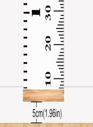 Hanging Growth Chart Shop I2ushop Hanging Ruler Height Growth Chart Online In