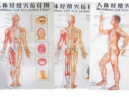 Acupuncture Point Chart Free Us 9 98 Free Shipping Color Body Acupuncture Points Chart Meridian Points Chart Meridian Chart Three Side Front Back Chinese English In Massage