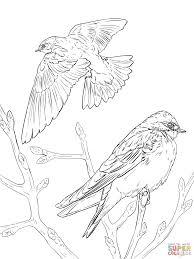Small Picture Realistic Tree Swallows coloring page Free Printable Coloring Pages