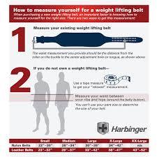Weight Lifting Belt 4