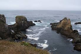 Bodega Head Bodega Bay 2019 All You Need To Know Before