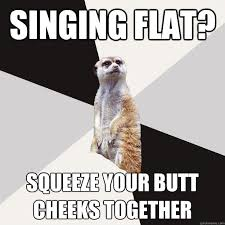 singing flat? squeeze your butt cheeks together - Musically ... via Relatably.com