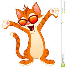 Image result for wednesday happy cat images