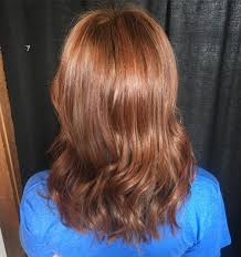 Dark Brown With Red Lowlights