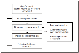 Guidelines For Safe Work Practices In Human And Animal