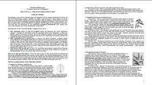 essay about biodiversity biodiversity essay essay on bio diversity  lsm biodiversity zoology zombifiedchris kent ridge practical schedule