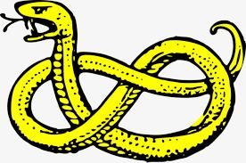 Resultado de imagen de serpiente amarilla