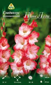 АПД <b>Гладиолус</b> Пинк Леди / A30183 (10шт) Семена цветов ...