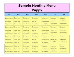 Puppy Feeding Schedule Chart 13 Best Photos Of Dog Food Menu Puppy Feeding Schedule