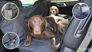 top 7 best car seat covers for dogs in 2020