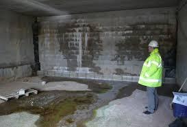best basement dehumidifiers in 2020