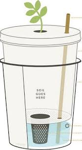Gathering Your Hygiene Preps   Another Easy Prepping Action You Can Take    Urban Gardening   Pinterest   Self Watering, Self Watering Planter And Diy  Self ...