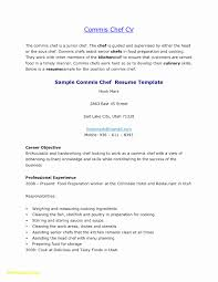 Sample Of Cook Resume Awesome Resume Samples Skills Beautiful Cook