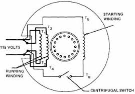 wiring diagram volt motor wiring image wiring single phase induction motors on wiring diagram 120 volt motor