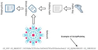 Applications of bitcoin scripts 14:49. Scriptpubkey Generation From Bitcoin Addresses To Identify Recipients Download Scientific Diagram