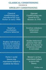 classical conditioning a basic form of learning my boys bruno  classical vs operant conditioning difference between classical and operant conditioning comparison of