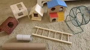 Homemade toys for mice