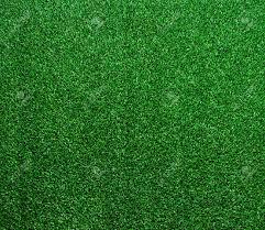 the artificial grass carpet