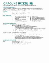 Examples Of A Combination Resume 73 Images Hybrid Format Template
