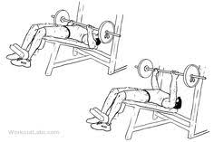Decline Bench Press Exercise For Chest  GoFitandHealthyDecline Barbell Bench