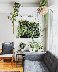 stunning living wall ideas for any room