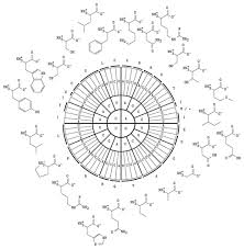 Codon Chart Circle Rna Codons Table Tikz Example