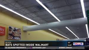 Walmart Alvin Tx Caught On Camera Bats Spotted Inside Alvin Walmart Youtube