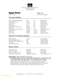 23 Resume Format For Beginners Free Sample Resume