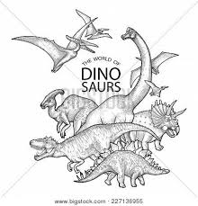 group of realistic graphic dinosaurs vector prehistoric s drawn in engraving technique coloring book page design