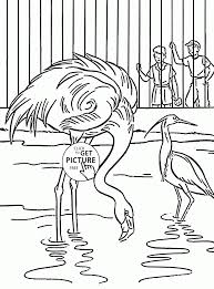 Small Picture Coloring Pages Animals River Otter In A Zoo Coloring Page Zoo