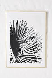 no 8 black white palm leaves wall art