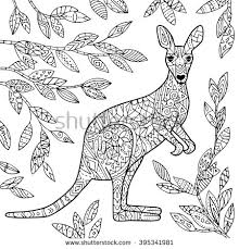 Small Picture Vector kangaroo illustration Adult coloring page Coloring