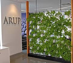 captivating vertical garden indoor interesting green wall for your office why gardens