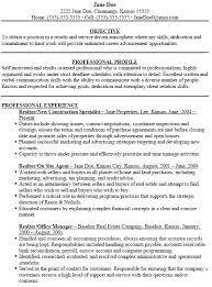 realestate sales resume realtor resume example