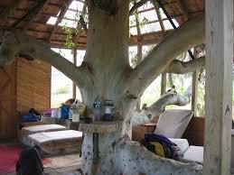 kids tree house inside. New Kids Tree House Interior Inside