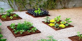 vegetable garden ideas landscaping