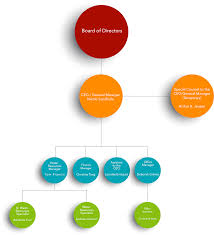 Hillsborough County Organizational Chart Organizational Chart