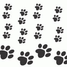 Shkn Siberian Husky Klub Voor Nederland Sinds 1969