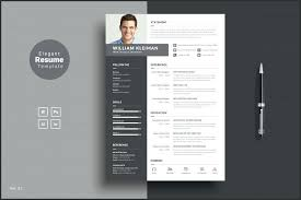 Indesign Resume Templates Adorable Indesign Resume Template Psd Best Free Resume Templates In Word