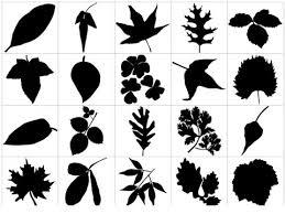 夏を感じる木や葉っぱなど植物系の無料ベクター素材450個まとめ