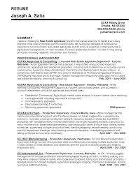 Commercial Appraiser Sample Resume Delectable Real Estate Development Manager Cv Example Resume Photo